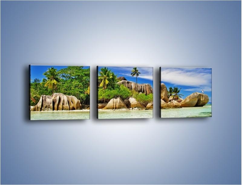 Obraz na płótnie – Tropiki i ich wysokości – trzyczęściowy KN1306AW1