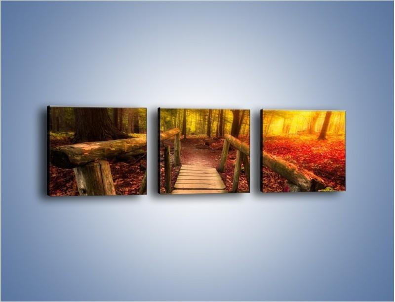 Obraz na płótnie – Krótkie przejście przez las – trzyczęściowy KN1330AW1