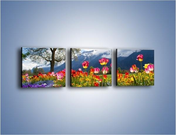 Obraz na płótnie – Tulipanki i ich towarzysze – trzyczęściowy KN1333AW1