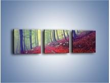 Obraz na płótnie – Bardzo wąską ścieżką leśną – trzyczęściowy KN1335AW1