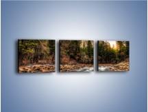 Obraz na płótnie – Chłodny dzień nad rwącym potokiem – trzyczęściowy KN1342AW1