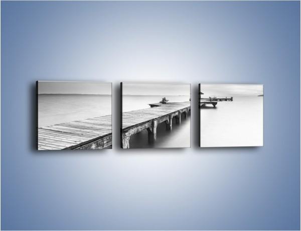 Obraz na płótnie – Most w sepii – trzyczęściowy KN1355AW1