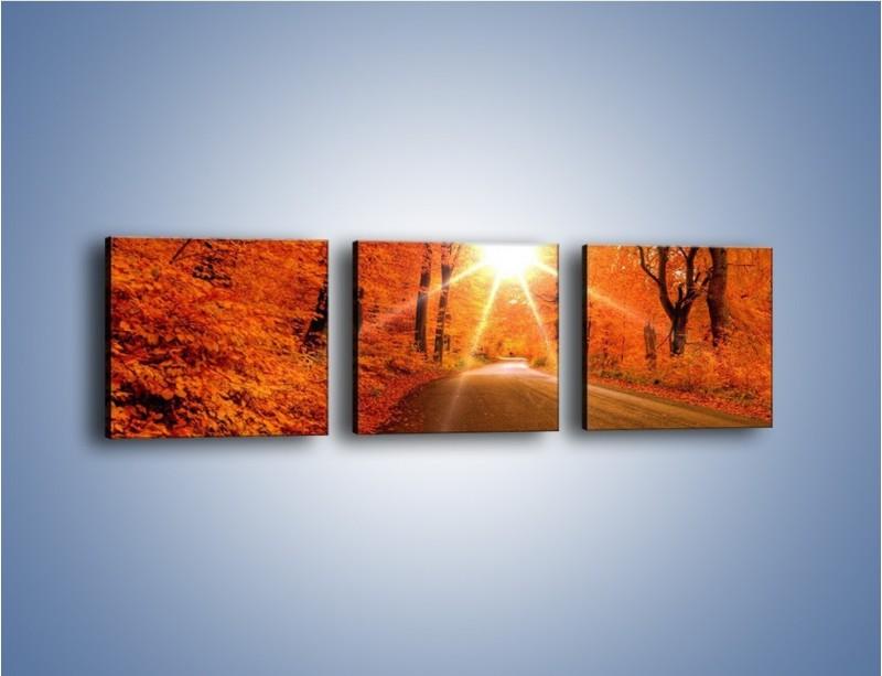 Obraz na płótnie – Droga pełna słońca – trzyczęściowy KN160W1