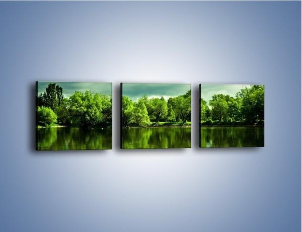 Obraz na płótnie – Drzewa w wodnym odbiciu – trzyczęściowy KN168W1