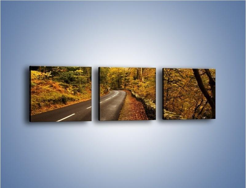 Obraz na płótnie – Asfaltową droga przez las – trzyczęściowy KN169W1