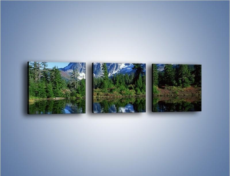 Obraz na płótnie – Zimowe pozostałości w górach – trzyczęściowy KN225W1