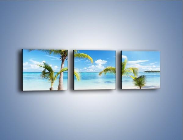 Obraz na płótnie – Palmy na pustej plaży – trzyczęściowy KN245W1