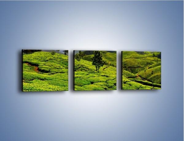 Obraz na płótnie – Góry całe w zieleni – trzyczęściowy KN246W1
