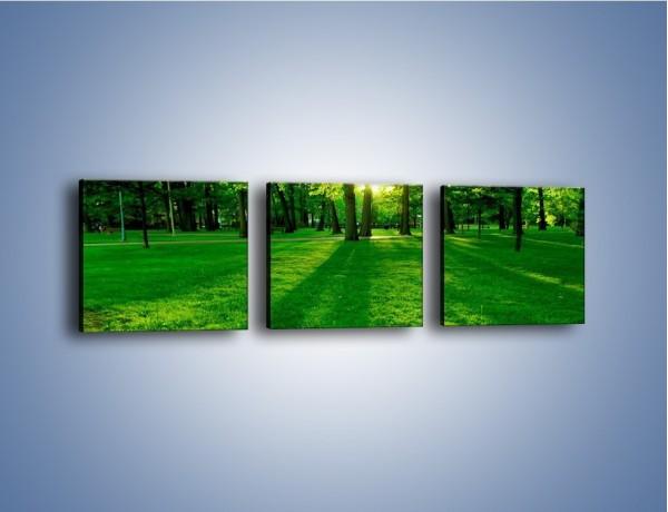 Obraz na płótnie – Spotkanie w parku – trzyczęściowy KN342W1