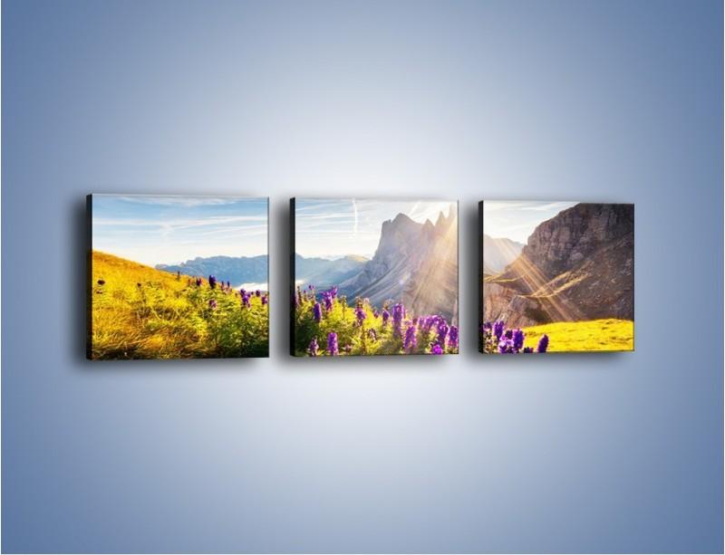 Obraz na płótnie – Góry w poświacie słońca – trzyczęściowy KN502W1