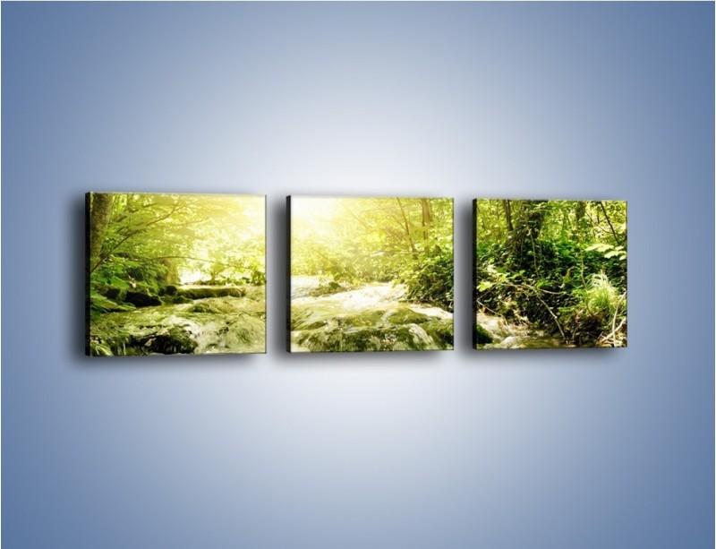 Obraz na płótnie – Wzburzony potok leśny – trzyczęściowy KN508W1