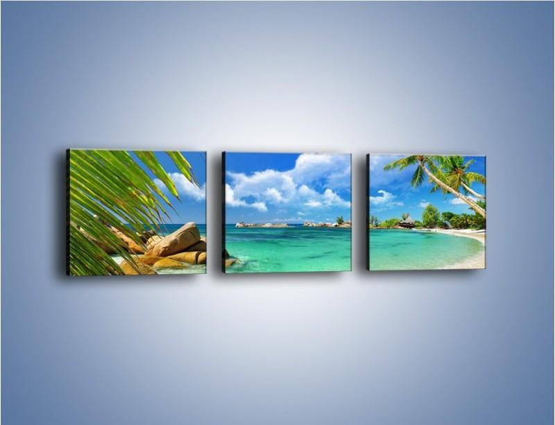 Obraz na płótnie – Tropikalna wyspa z katalogu – trzyczęściowy KN565W1