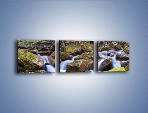 Obraz na płótnie – Rwący potok w chłodny dzień – trzyczęściowy KN676W1