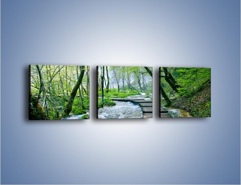 Obraz na płótnie – Drewniana kładką przez potok – trzyczęściowy KN720W1