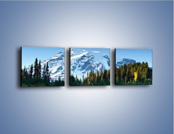 Obraz na płótnie – Lawenda góry i śnieg – trzyczęściowy KN733W1