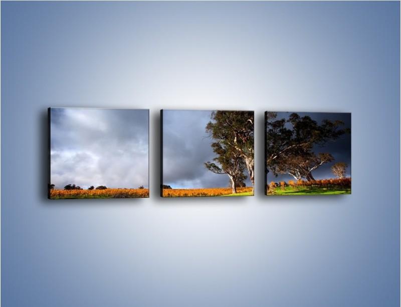 Obraz na płótnie – Burzowe chmury nad polaną – trzyczęściowy KN748W1
