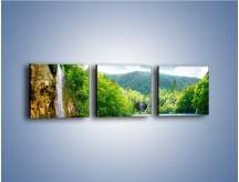 Obraz na płótnie – Cały urok górskich wodospadów – trzyczęściowy KN769W1
