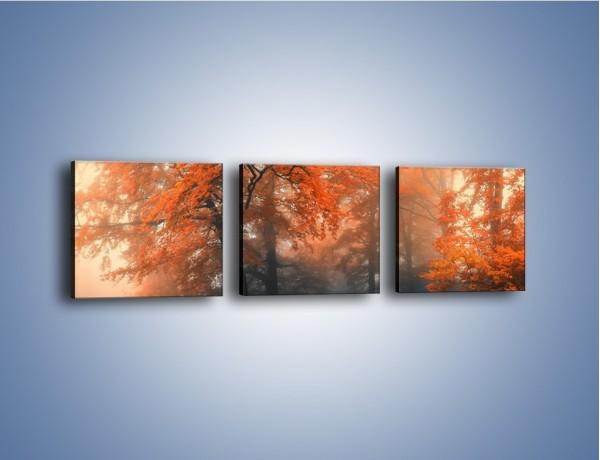 Obraz na płótnie – Mgła w czerwonym lesie – trzyczęściowy KN804W1