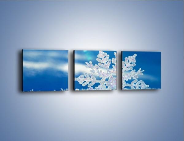 Obraz na płótnie – Diamentowa śnieżynka – trzyczęściowy KN808W1