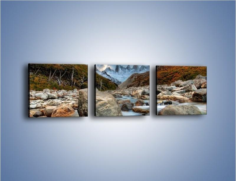 Obraz na płótnie – Niebezpieczny spacer po mokrych kamieniach – trzyczęściowy KN810W1