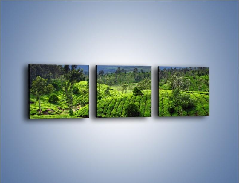 Obraz na płótnie – Rozległa zielona kraina – trzyczęściowy KN872W1