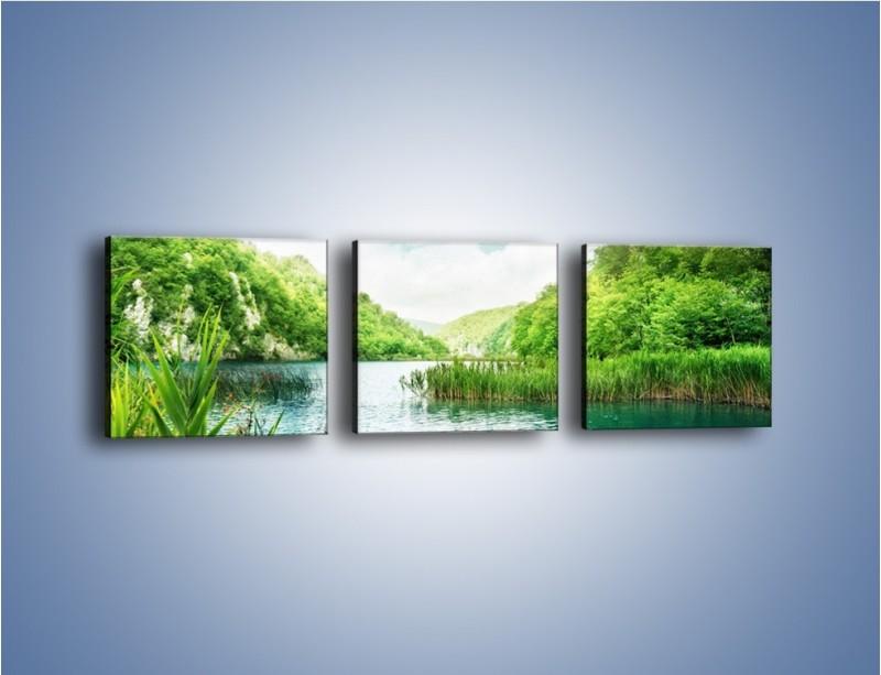 Obraz na płótnie – Wodnym śladem wśród zieleni – trzyczęściowy KN884W1