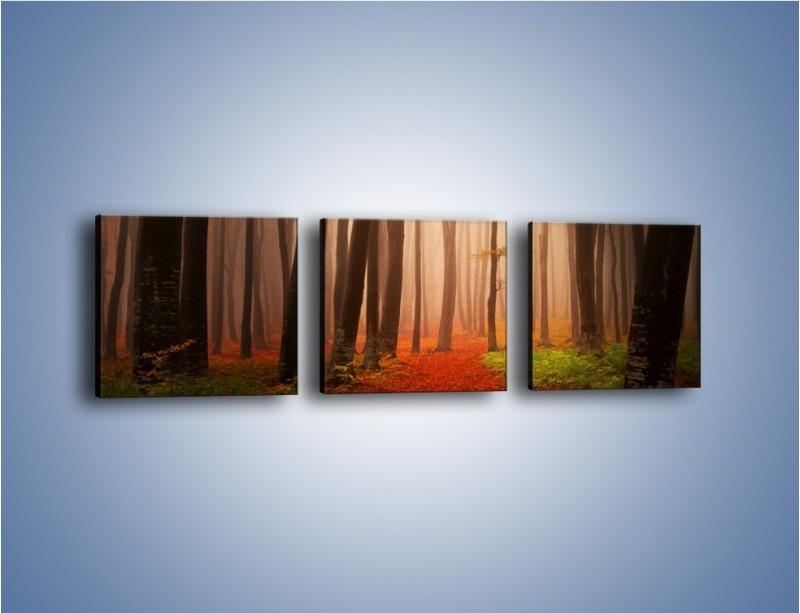 Obraz na płótnie – Las pełen tajemnic – trzyczęściowy KN909W1