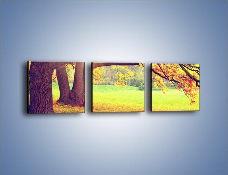 Obraz na płótnie – Jesienią w parku też jest pięknie – trzyczęściowy KN967W1