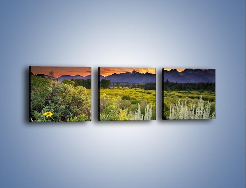 Obraz na płótnie – Wieczorny spokój na polanie – trzyczęściowy KN987W1