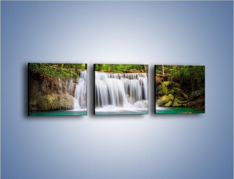 Obraz na płótnie – Kąpiel w środku lasu – trzyczęściowy KN995W1