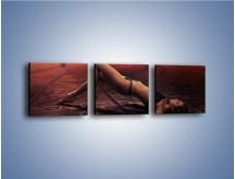 Obraz na płótnie – Kobiece ciało na bruku – trzyczęściowy L055W1