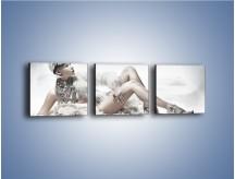Obraz na płótnie – Biel i jego bogactwo – trzyczęściowy L100W1