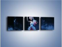 Obraz na płótnie – Biała księżniczka w ponurym lesie – trzyczęściowy L102W1