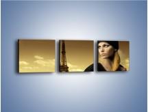 Obraz na płótnie – Czarna dama w paryżu – trzyczęściowy L114W1
