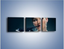 Obraz na płótnie – Czarna dama w diamentach – trzyczęściowy L171W1