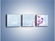 Obraz na płótnie – Delikatna królowa śniegu – trzyczęściowy L224W1