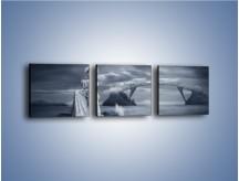 Obraz na płótnie – Dama w sepii – trzyczęściowy L292W1