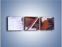 Obraz na płótnie – Melodia grana na skrzypcach – trzyczęściowy O003W1