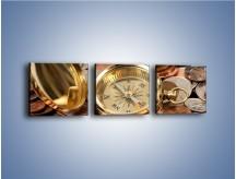 Obraz na płótnie – Kompas zatopiony w monetach – trzyczęściowy O089W1