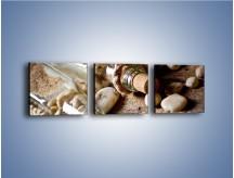 Obraz na płótnie – Morskie dodatki przy butelkach – trzyczęściowy O090W1