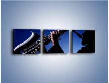 Obraz na płótnie – Koncert na saksofonie – trzyczęściowy O110W1