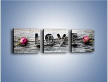 Obraz na płótnie – Miłość pachnąca różami – trzyczęściowy O146W1