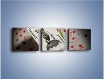 Obraz na płótnie – Najsilniejsza karta w talii – trzyczęściowy O157W1