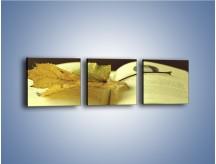Obraz na płótnie – Liść na ciekawej powieści – trzyczęściowy O163W1