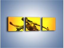 Obraz na płótnie – Figurka ważna w świecie prawa – trzyczęściowy O164W1