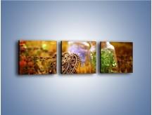Obraz na płótnie – Kolorowy świat jak z bajki – trzyczęściowy O189W1