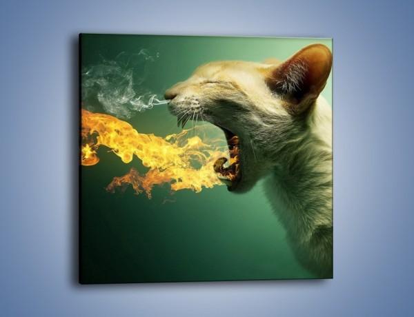 Obraz na płótnie – Kot z gorącym oddechem – jednoczęściowy kwadratowy GR180