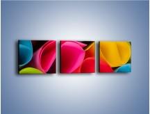 Obraz na płótnie – Kolorowe rulony – trzyczęściowy O217W1