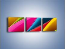Obraz na płótnie – Idealna kolorowa kompozycja – trzyczęściowy O219W1