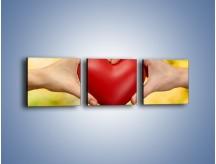Obraz na płótnie – Miłość dwojga ludzi – trzyczęściowy O240W1